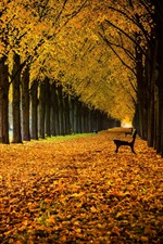 Preview iPhone wallpaper Germany, Lower Saxony, alley, park, trees, bench, leaves, autumn