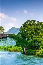 Guangxi Guilin Yangshuo, ponte, rio, árvores, montanhas, belas paisagens