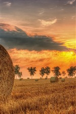 Preview iPhone wallpaper Hay, sunset, summer, trees, clouds