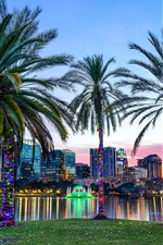Lake Eola Park, Orlando, palm trees, city, USA