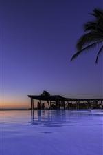 Preview iPhone wallpaper Mexico, Nayarit, Palma, sea, palm tree, tropical, sunset