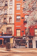 Preview iPhone wallpaper New York, stores, apartments, road, trees, flowers, USA