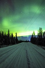 Northern lights, road, trees, stars, night, winter, snow