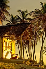 Preview iPhone wallpaper Palm trees, hut, sunset, tropical
