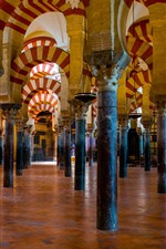 Preview iPhone wallpaper Spain, Mexico, mosque, column
