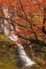 Preview iPhone wallpaper Spain, waterfall, trees, autumn, red leaves