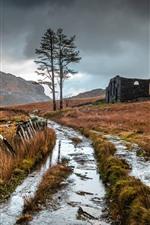 Preview iPhone wallpaper Trees, creek, grass, clouds, broken house