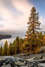 Trees, lake, rocks, clouds, autumn