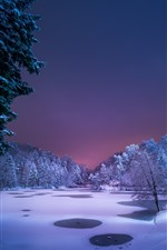 Preview iPhone wallpaper Trees, night, snow, pond, winter