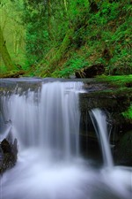 Preview iPhone wallpaper Waterfall, tree, moss, green, nature