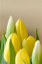Preview iPhone wallpaper Yellow tulips, bouquet, flowers