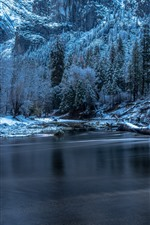 Preview iPhone wallpaper Yosemite National Park, driftwood, trees, river, winter
