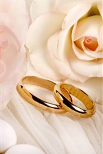 Preview iPhone wallpaper A pair gold rings, pink roses, romantic