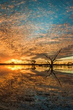 Preview iPhone wallpaper Australia, Campbell Swamp, lake, sunset, clouds