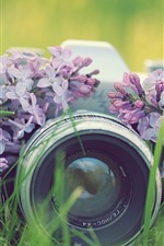 Camera and lilac flowers, lens, grass