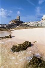 Preview iPhone wallpaper Coast, beach, sea, water, foam, rocks