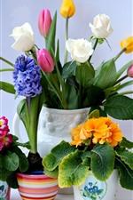 Preview iPhone wallpaper Colorful flowers, tulips, roses, gerberas, hyacinths, primroses