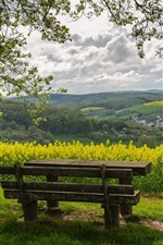 Preview iPhone wallpaper Countryside, rapeseed flowers, trees, bench, spring