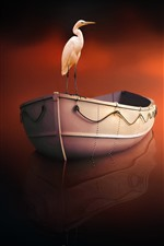 Heron, boat, water reflection, creative picture