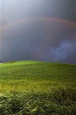 Preview iPhone wallpaper Rainbow, wheat field, clouds, house, storm