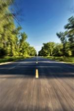 Road, speed, trees, hazy