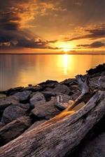 Rochas, tronco seco, pôr do sol, rio