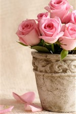 Some pink roses, petals, vase