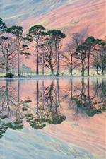 Some trees, lake, water reflection