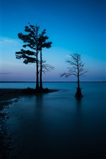 Preview iPhone wallpaper Trees, coast, sea, silhouette, dusk