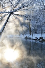 Preview iPhone wallpaper Trees, river, snow, sun rays, morning, winter