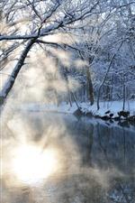 Trees, river, snow, sun rays, morning, winter