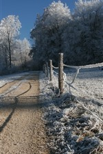 Winter, thick snow, fence, trees, road, countryside