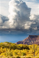 Zion National Park, clouds, trees, autumn, USA