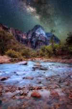 Preview iPhone wallpaper Zion National Park, mountains, starry, night, trees, USA