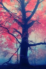 Preview iPhone wallpaper Autumn, trees, red leaves, fog