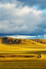 Preview iPhone wallpaper Bashang grassland, golden autumn, China