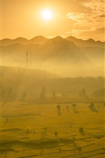 Preview iPhone wallpaper Beautiful golden rice fields, morning, sunrise, sun rays, mountains