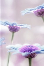 Preview iPhone wallpaper Blue flowers, petals, art background