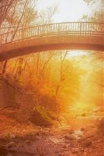 Bridge, autumn, creek, sunshine, hazy, fog