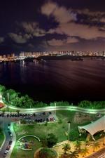 City night, top view, cars, roads, bay, lake, lights