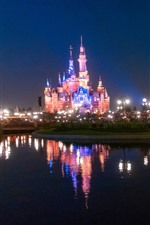 Preview iPhone wallpaper Disneyland, beautiful castle, lights, river, night