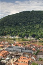 Preview iPhone wallpaper Germany, Heidelberg, city, river, bridge, mountain