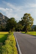 Preview iPhone wallpaper Germany, road, mountains, trees, green field, castle
