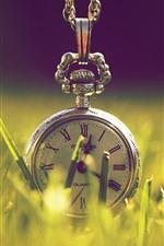Preview iPhone wallpaper Pocket watch, grass