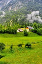 Preview iPhone wallpaper Slovenia beautiful scenery, mountains, trees, green, village, fog