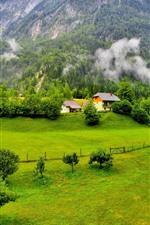 Slovenia beautiful scenery, mountains, trees, green, village, fog