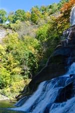 Waterfall, trees, sunshine