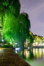 Preview iPhone wallpaper West Lake beautiful night scenery, lights, willow