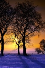 Preview iPhone wallpaper Winter, trees, sunset, snow, people