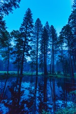 Preview iPhone wallpaper Yosemite, dusk, forest, trees, pond, water reflection, USA